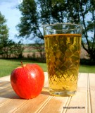 Apple Wine Cider Pint Glass