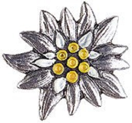 edelweiss-pewter-german-hat-pin-2003014c-550.jpg